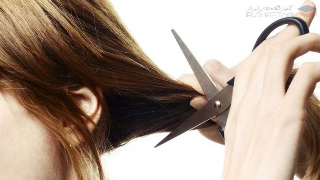 آموزش کوتاهی مو زنانه در شیراز